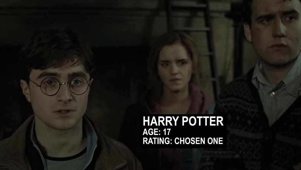 Harry-Potter-VS-The-World-©-2014-The-Usual-Suspect-1