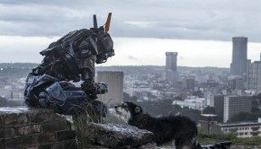 Chappie-©-2014-Sony-Pictures(6)