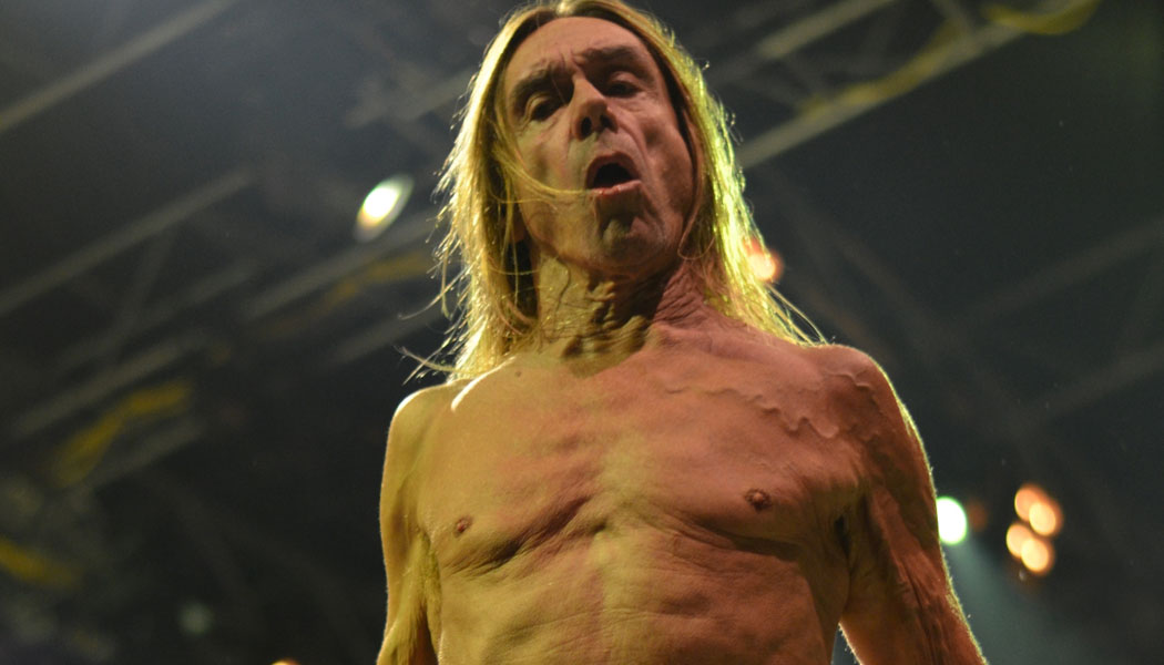 Iggy-Pop-(c)-pressplay,-Pat