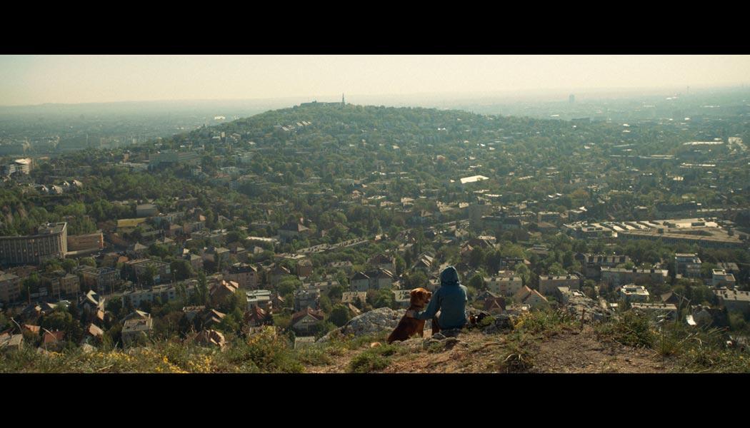 Underdog-(c)-2015-Thimfilm(2)