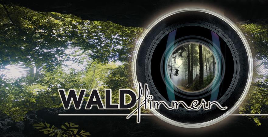 WALDflimmern (mit Gewinnspiel)