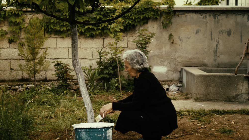 Babamin-Sesi-©-2012-Aries-Images