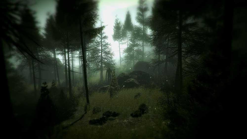 Slender-The-Arrival-©-Parsec-Productions,-Blue-Isle-Studios.jpg8