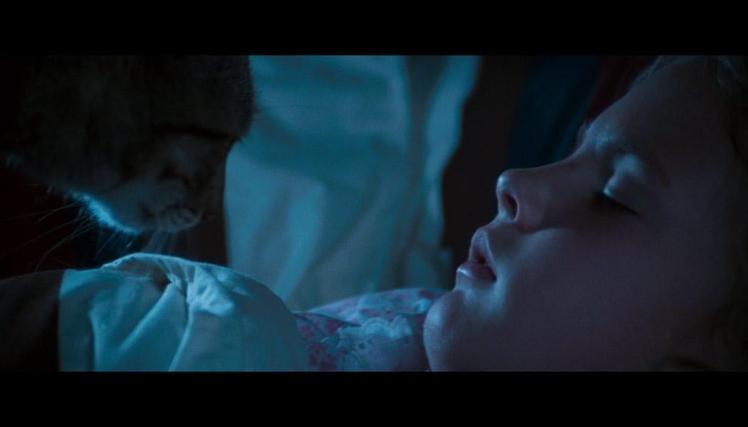 Stephen-King-Katzenauge-(c)-1985,-2017-Koch-Film(3)