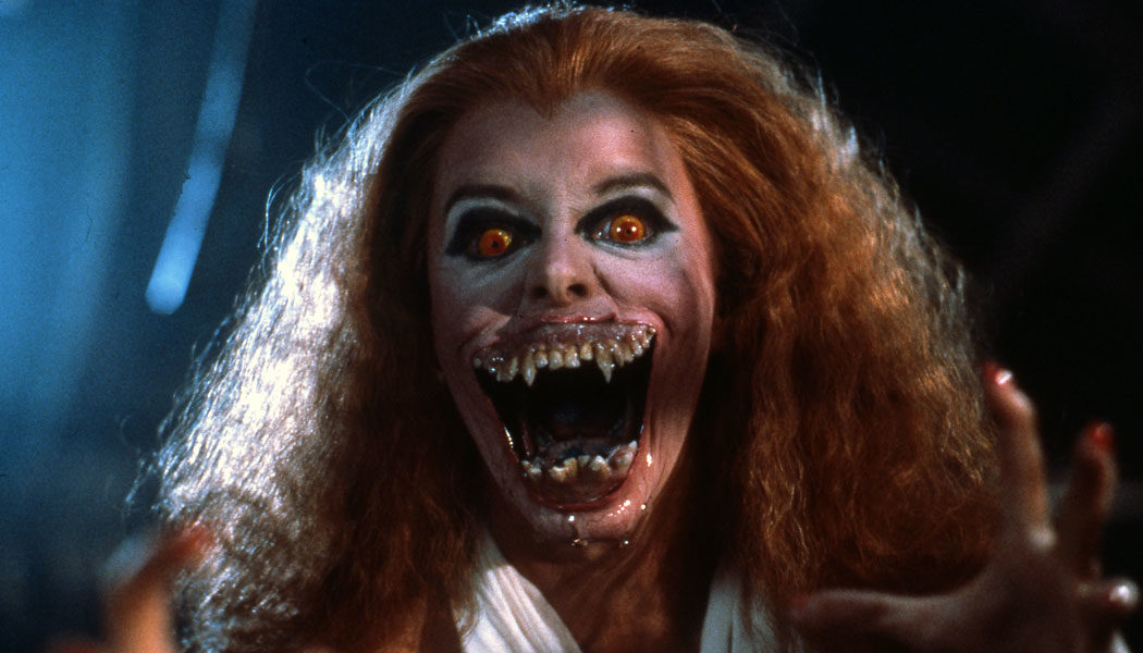 Die-rabenschwarze-Nacht-Fright-Night-(c)-1985-Columbia-Pictures-Industries,-Inc.,-Sony-Pictures-Home-Entertainment(6)